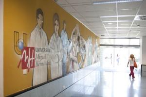Universidad Miguel Hernandez - Universidad de Elche (Alicante)