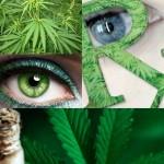 ¿Qué efectos tiene en el glaucoma el uso de la marihuana?
