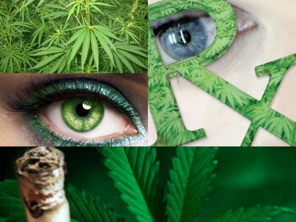 Dudas sobre el uso terapéutico de la marihuana para tratar el glaucoma
